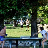 loisirs-tennis-de-table-534x800